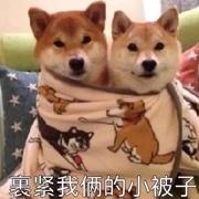 情人节 | KONZEN空间男装让你汪汪翻身!