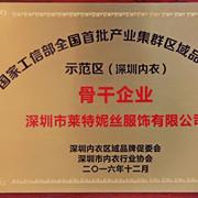莱特妮丝荣获国家工信部首批产业集群区域品牌建设示范区骨干企业