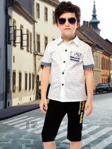 泰迪珍藏夏款衬衫