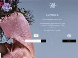 全球最大奢侈品集团 LVMH 新电商网站到底怎么样?