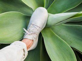 以舒适著称的羊毛运动鞋品牌Allbirds在洛杉矶开快闪店