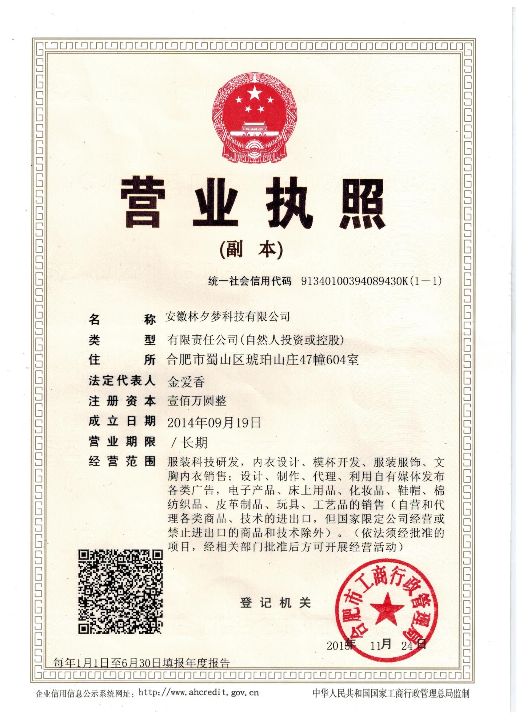 安徽林夕梦科技有限公司企业档案