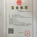 武汉魔颜服饰有限公司企业档案