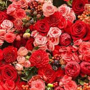 佧茜文新品:当情人节遇到春节 最理想的穿搭指南