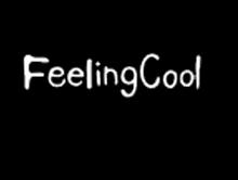 飞兰蔻FeelingCool