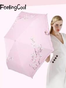 飞兰蔻雨伞