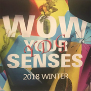 YDG 2018 WINTER 新品發佈會 | WOW! YOUR SENSES~