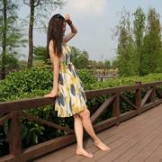 旅行出游,《DISIR迪丝爱尔女装》带给您美丽之旅!