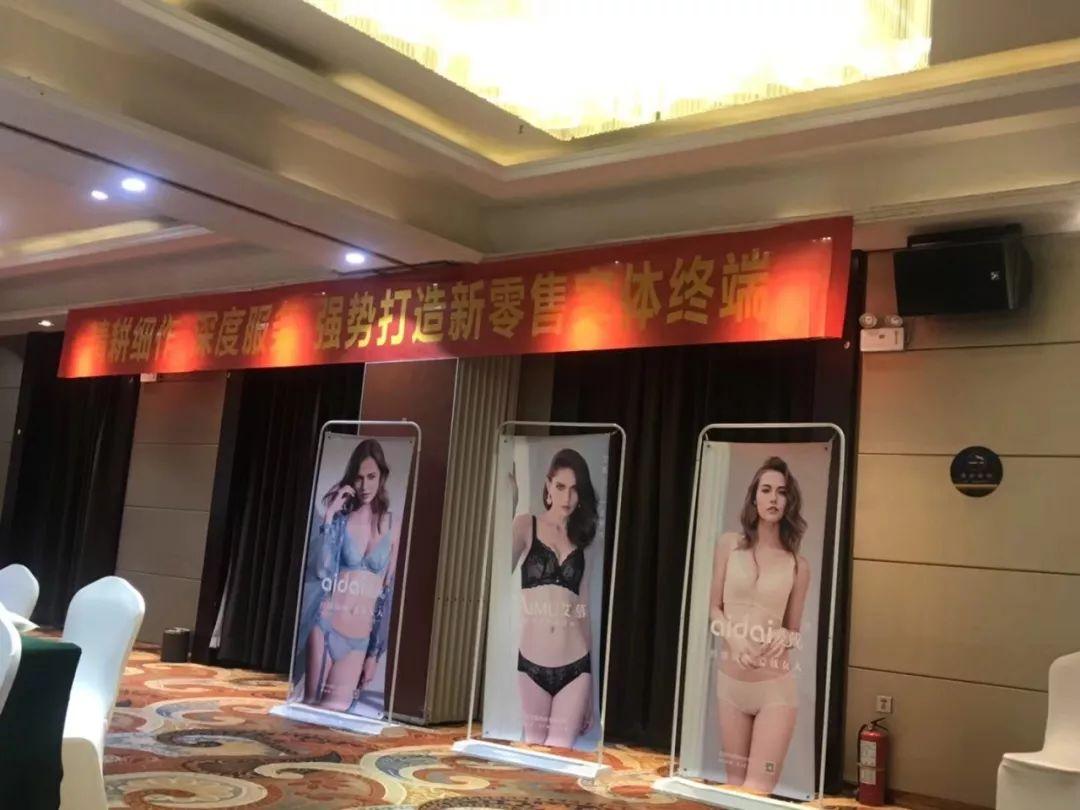 热烈祝贺爱戴内衣2018新品发布会暨培训会宁夏站圆满举行!