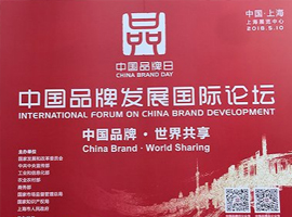 """首届""""中国品牌日"""" 中国品牌国家论坛讲了些什么"""