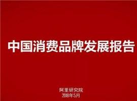 报告也PK,《中国品牌报告》阿里京东谁家更有料?