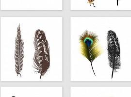 动物皮草退出时尚界后,羽毛制品会成为第二个皮草吗