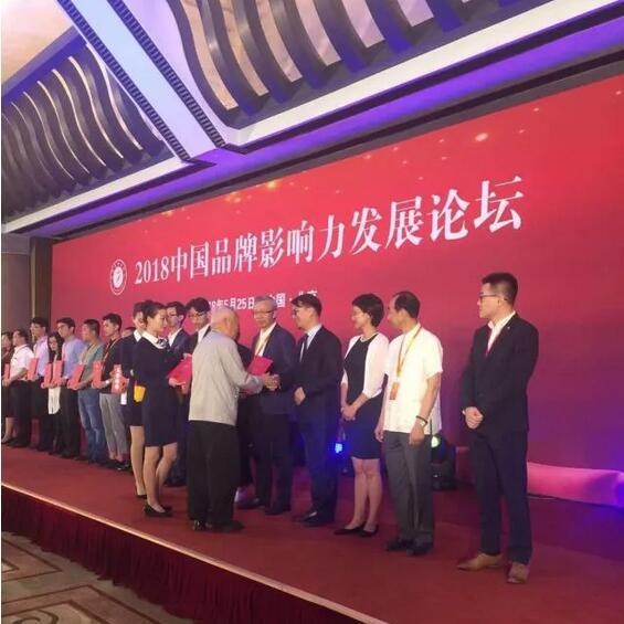见证品牌的力量 罗蒙获第五届中国品牌影响力评价结果两项大奖殊荣