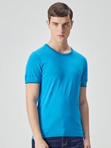 EHE男装新款蓝色T恤