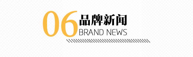 雪中飞品牌新闻