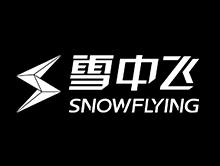 雪中飞羽绒服品牌