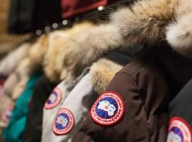 加拿大鹅成奢侈羽绒品牌最大一匹黑马 去年利润翻了4.5倍
