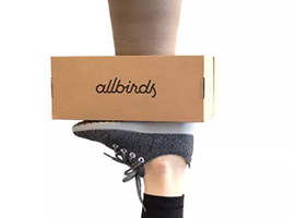 羊毛运动鞋Allbirds如何横扫科技圈与时尚圈?
