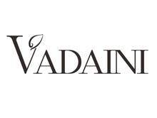 华丹尼VADAINI