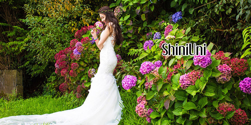 ShiniUniShiniUni