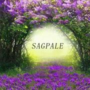 Sapgale熙+风尚 抓住春天,用力美。