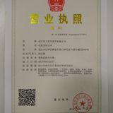 武汉优力星光商贸有限公司企业档案