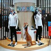 袋鼠男装五月再添新店 祝贺袋鼠品牌男装重庆江北茂业天地店隆重开业!