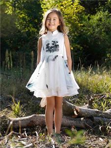 贝的屋中式水墨印花刺绣裙子