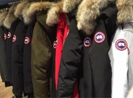 动物保护组织批判加拿大鹅 压力下或放弃使用狼毛
