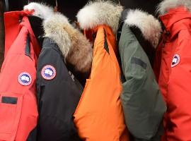 亏损或将显著扩大 加拿大鹅一财季业绩将公布