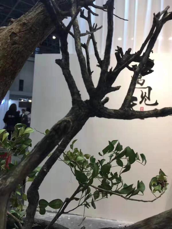 """深圳巨献服饰旗下""""遇见天""""品牌亮相上海CHIC展"""