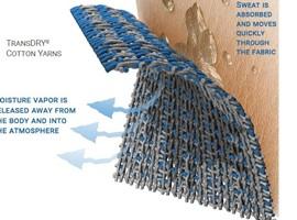 塑造棉纺产品可持续竞争力——美国棉花公司亚洲供应链营销副总监林蓓访谈