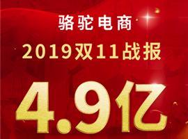 骆驼电商双11单日支付金额超4.9亿:男鞋类目卫冕九连冠