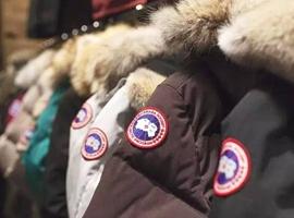 面对来自波司登的竞争威胁 加拿大鹅下一步该怎么走