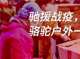 """骆驼为广东援鄂返程医疗队提供""""后盾""""保卫"""