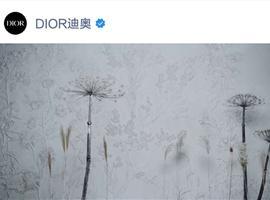 继Louis Vuitton之后,Prada与Dior入驻微信视频号