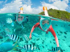 应对医疗器械短缺 迪卡侬浮潜运动面罩被改造成呼吸面罩