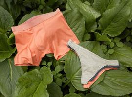 Allbirds推出新内衣系列  探索新的可再生材料