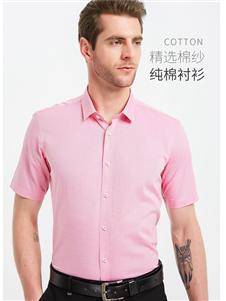皮尔卡丹新款纯棉衬衫