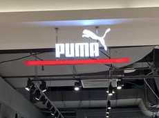 Puma第二季盈转亏蚀8030万欧元 低于预期