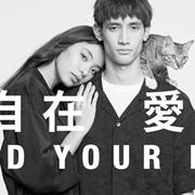 """目录 丨單農""""流動攝影展"""""""