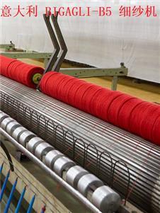 鹿王紗線粗紡 意大利 BIGAGLI-B5 細紗機