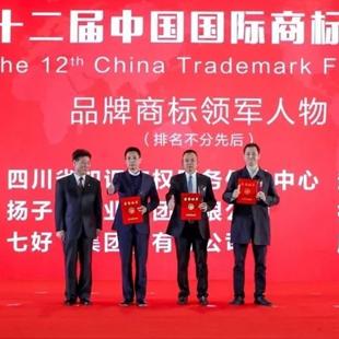 ***七好集团董事长周建云在第十二届中国国际商标品牌节荣膺2020年度品牌商标领军人物称号