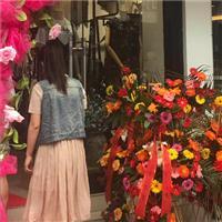 热烈祝贺阿莱贝琳女装六盘水新店盛大开业!