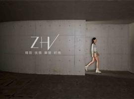 ZHV品牌推介
