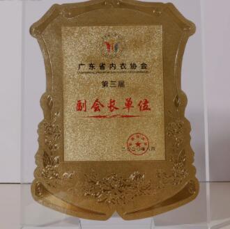 热烈祝贺港莎棉品被授予广东省内衣协会副会长单位!